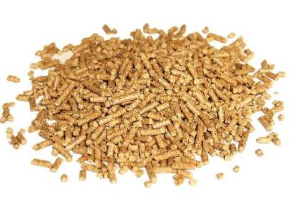 pawlonia biomasa